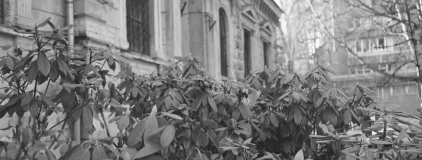 Anniņmuiža. Foto Anastasija Lomteva