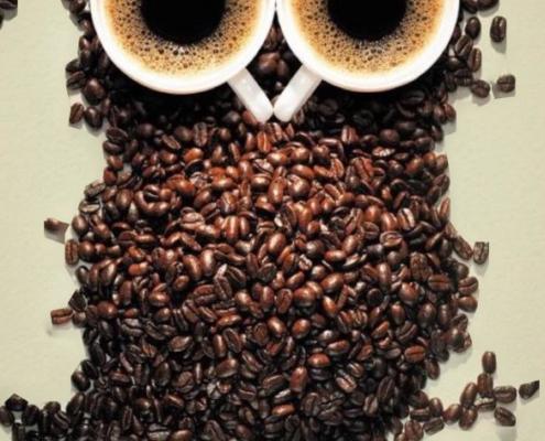 Pūce no kafijas pupiņām veidota