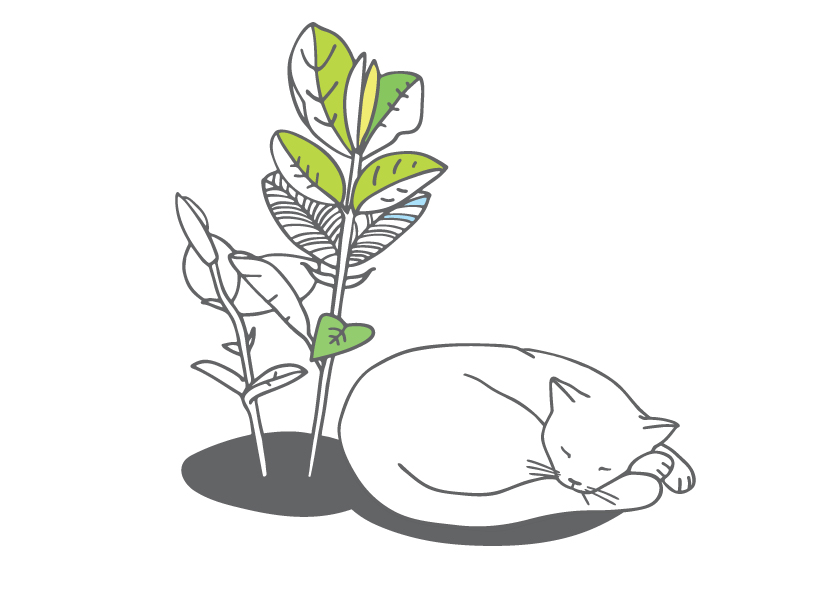 Gitas Strazdiņas-Dzintaras ilustrācija